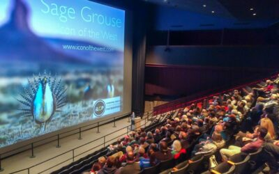 Sage Grouse, Icon of the West program, at Denver Museum of Nature and Science