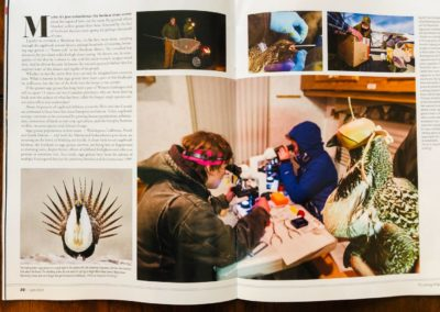 Article in the Wyoming Wildlife Magazine